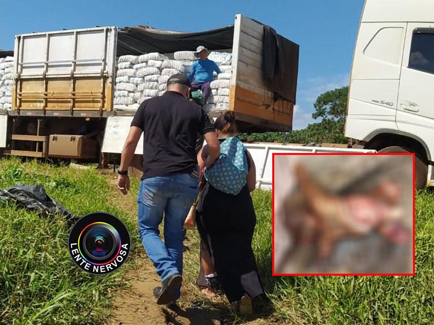 Cachorro encontrou cadáver de bebê morto e esquartejado pela mãe; delegado fala sobre o caso – VÍDEO