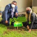 Vereadora Márcia Socorristas Animais planta árvore em alusão ao mês do Meio Ambiente